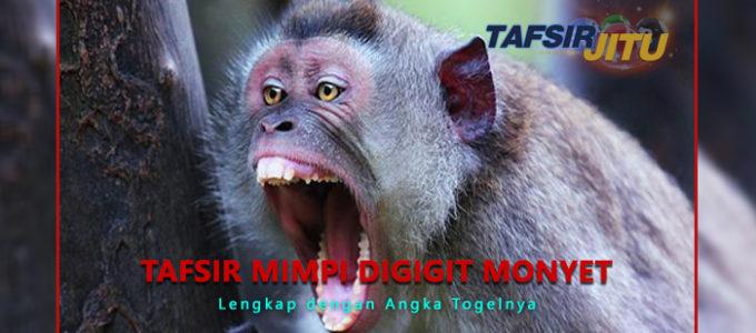 tafsir-mimpi-digigit-monyet